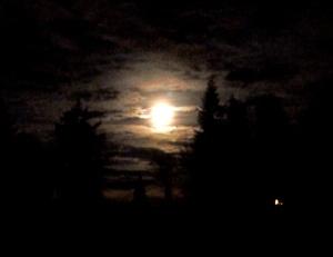 Full Moon Jan 2012