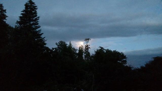 for-full-moon-blog